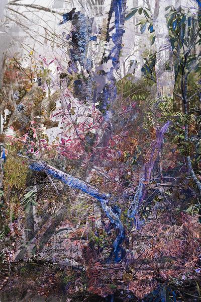 Untitled (Julian Price, 1)201842Óx63Ó Archival Inkjet Print