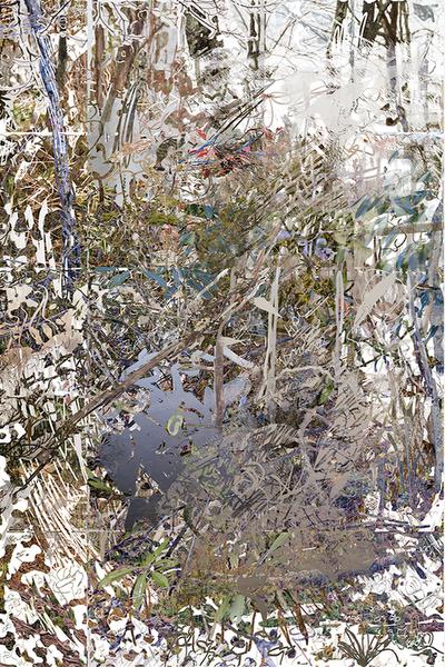 Untitled (Julian Price, 2)2018 //42Óx63Ó Archival Inkjet Print