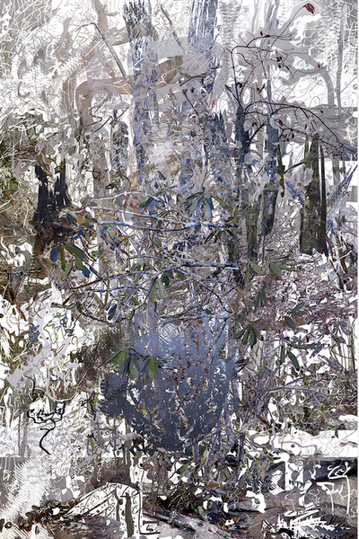 Untitled (Julian Price, 3)2018 //42×63 Archival Inkjet Print